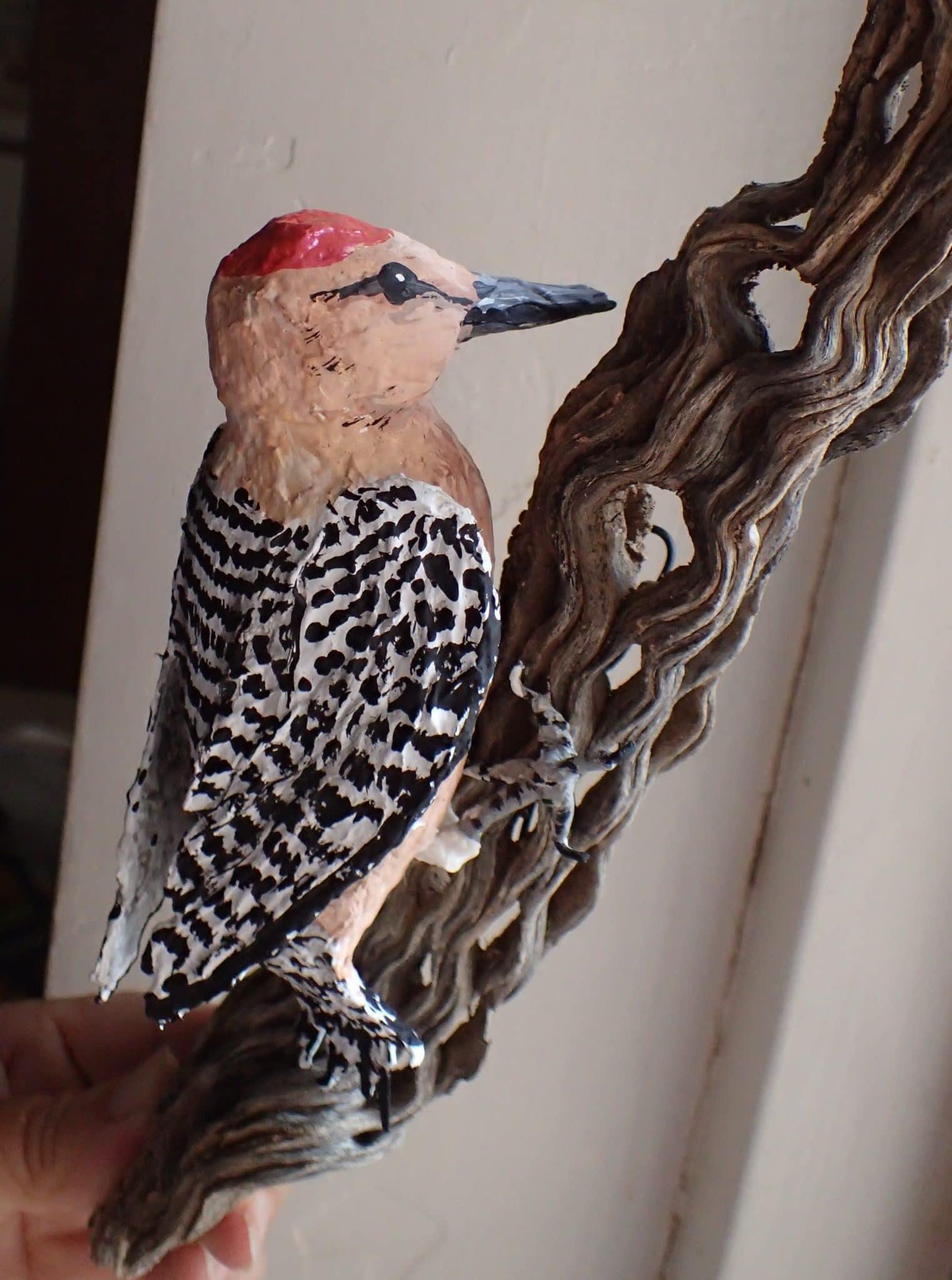 Paper mache Gila Woodpecker