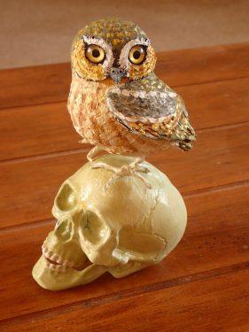 Dia de los Muertos Owl?