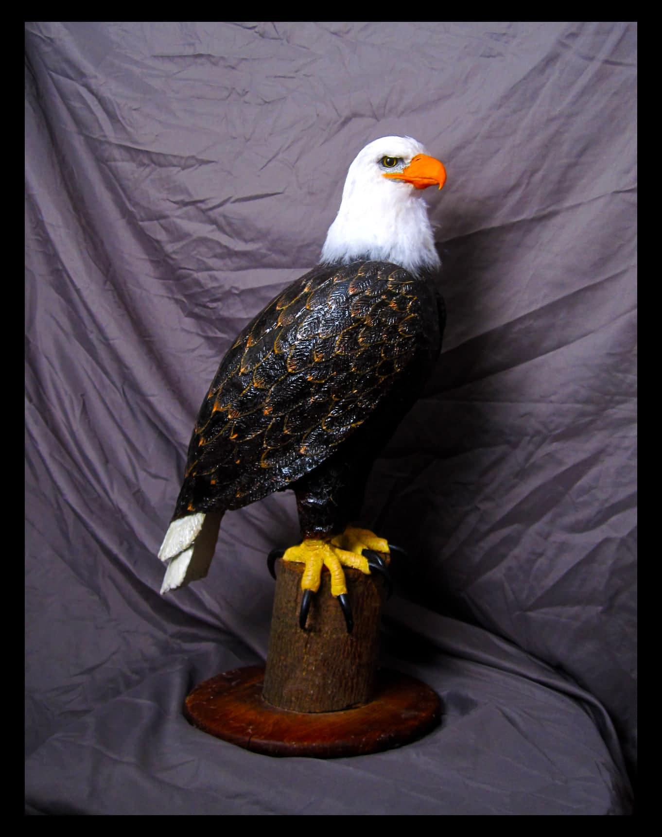 Paper mache eagle