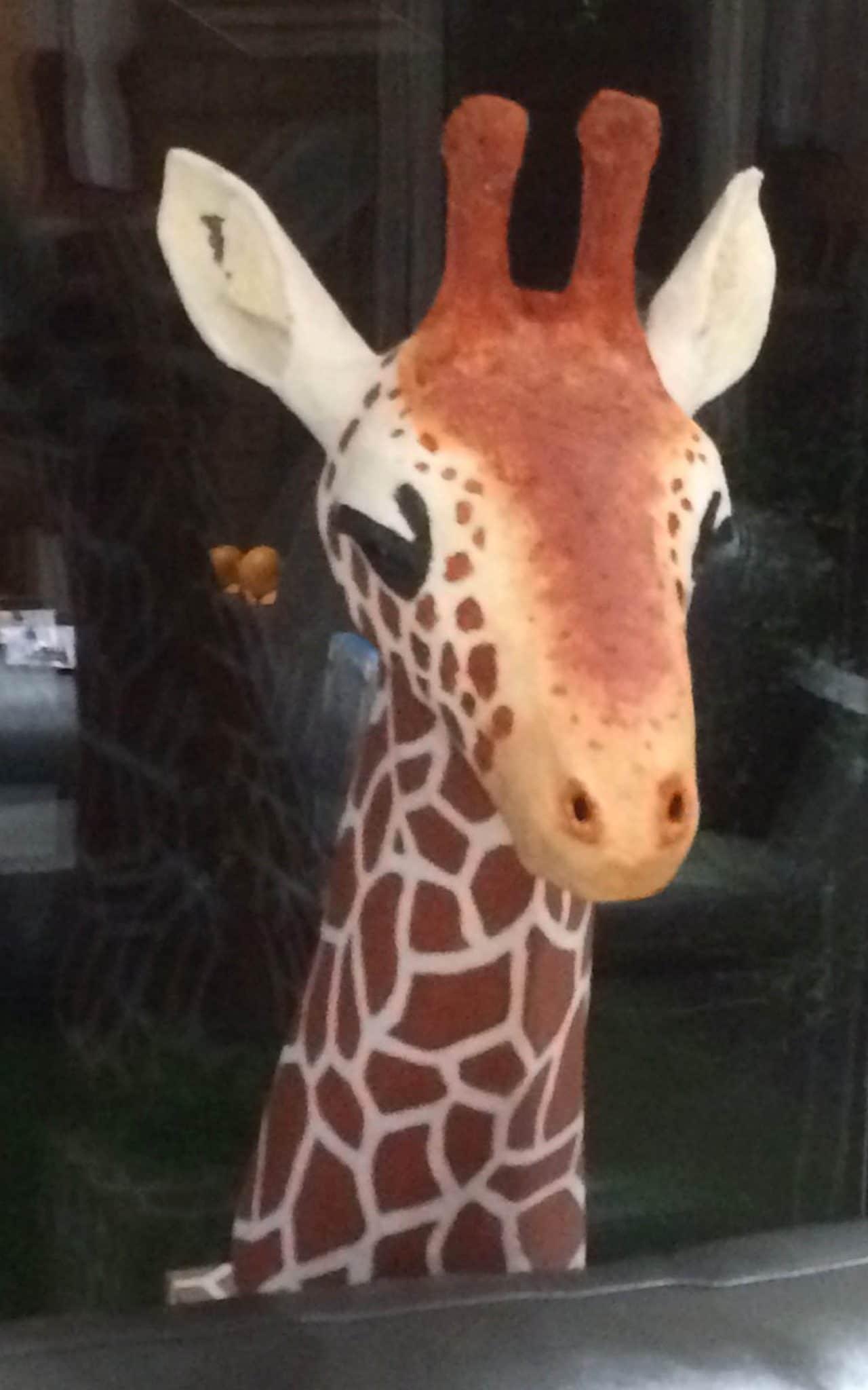 Paper mache giraffe painted