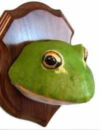 easy pattern for a bullfrog wall sculpture made with paper mache