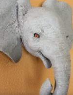 Paper Mache Baby Elephant Wall Sculpture