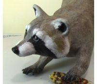 Paper Mache Raccoon